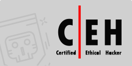 ceh-information-security-governance